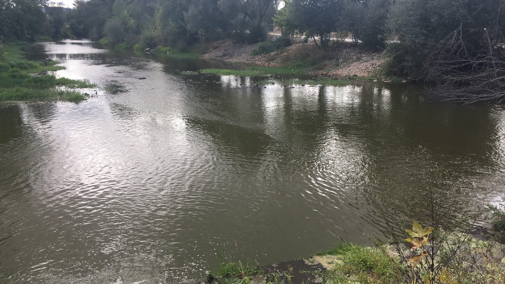 Poluição no Rio Tâmega. Veiga de Chaves. 12 de setembro de 2017