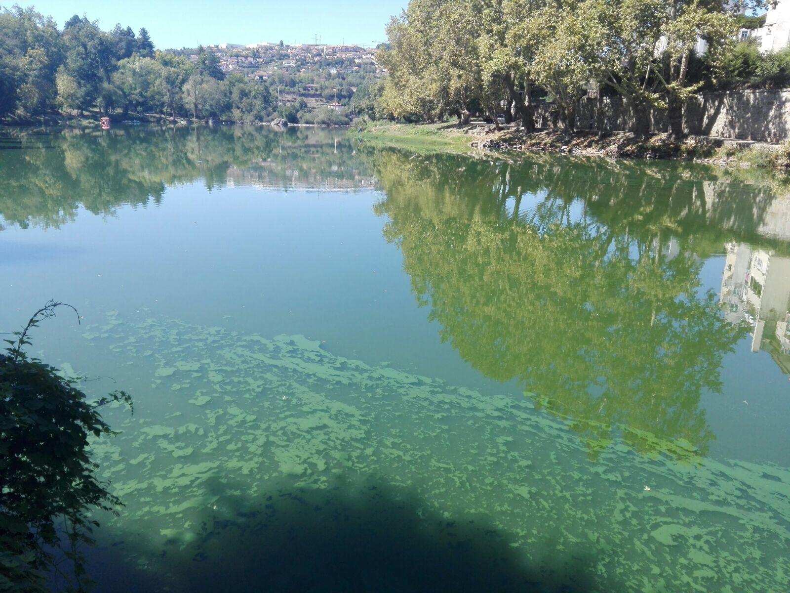 Poluição no rio Tâmega. Amarante. 13 de setembro de 2017