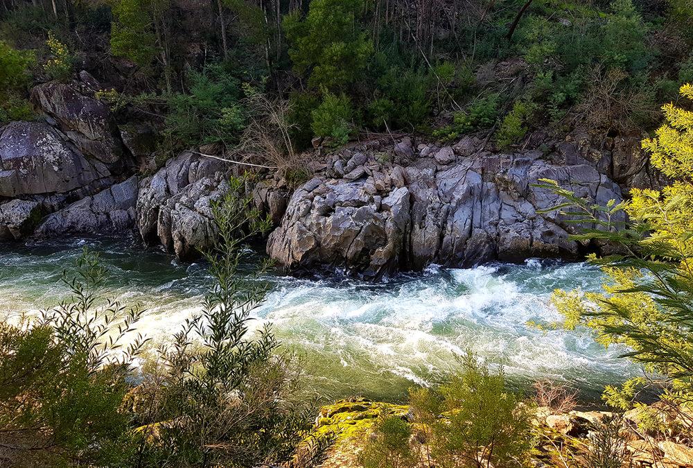 Iberdrola substitui EDP na construção da barragem de Fridão? GEOTA pede esclarecimentos à APA